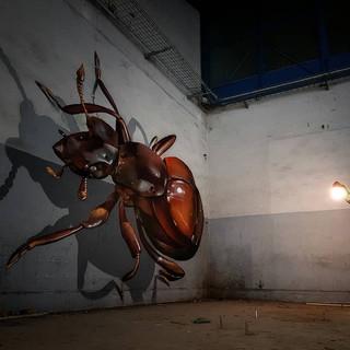 3д жук от odeith