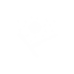 37-Icon.png