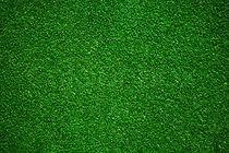 Green Astro Turf.jpg