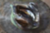 _DSC0048.jpg