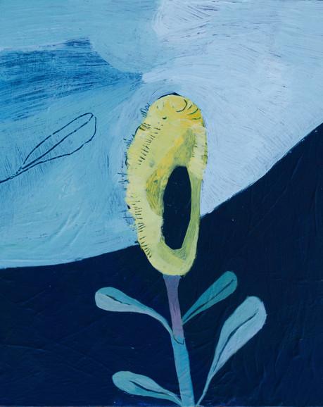 In the land where flowers grow II, acrylic on canvas, 25 x 35cm, Artsite Galleries, 2019
