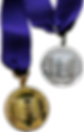 awards-nle-medal-gold-silver.png