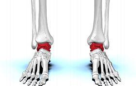 bio Pic of feet.jpg