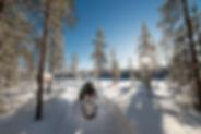 schweden_w-0273.jpg