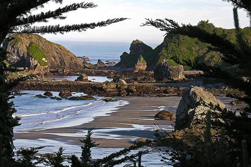 Rocky shore at Harris Beach State Park in Oregon.
