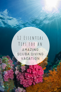 Pinterest image for 12 Essential Tips for an Amazing Scuba Diving Vacation