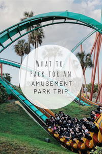 Pinterest photo of what to pack for an amusement park trip