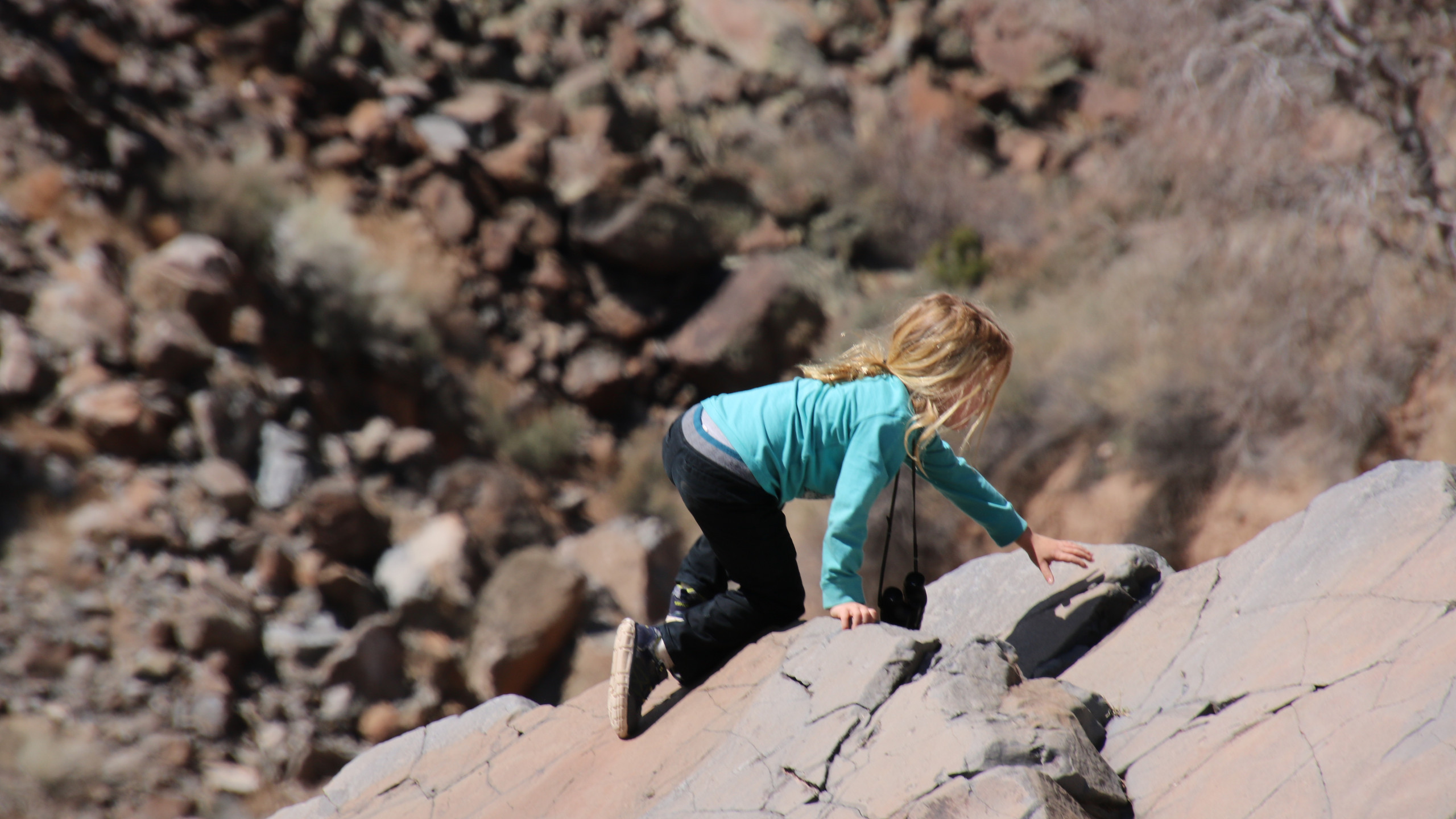 Little blonde boy in teal shirt and black pants climbing a rock in Diablo Canyon