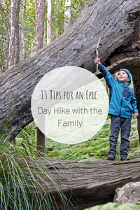 Pinterest image for 13 Tips for an Epic Day Hike with the Family.