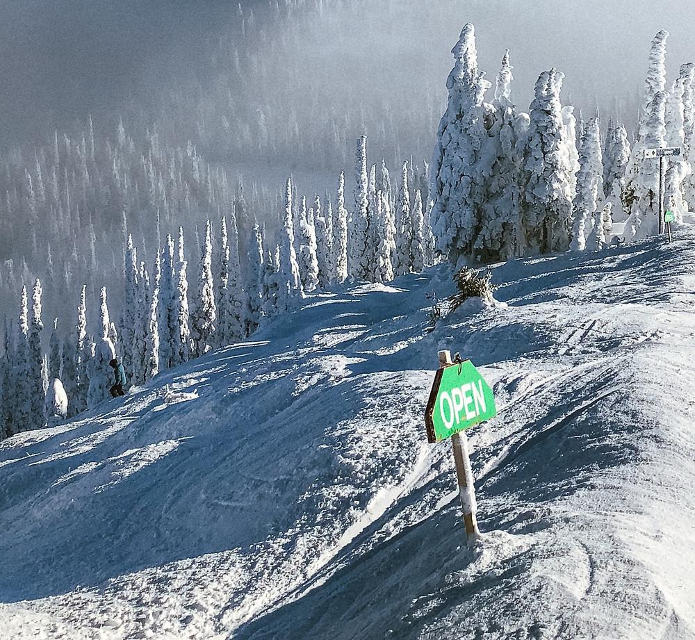 Snow moguls during a family ski trip