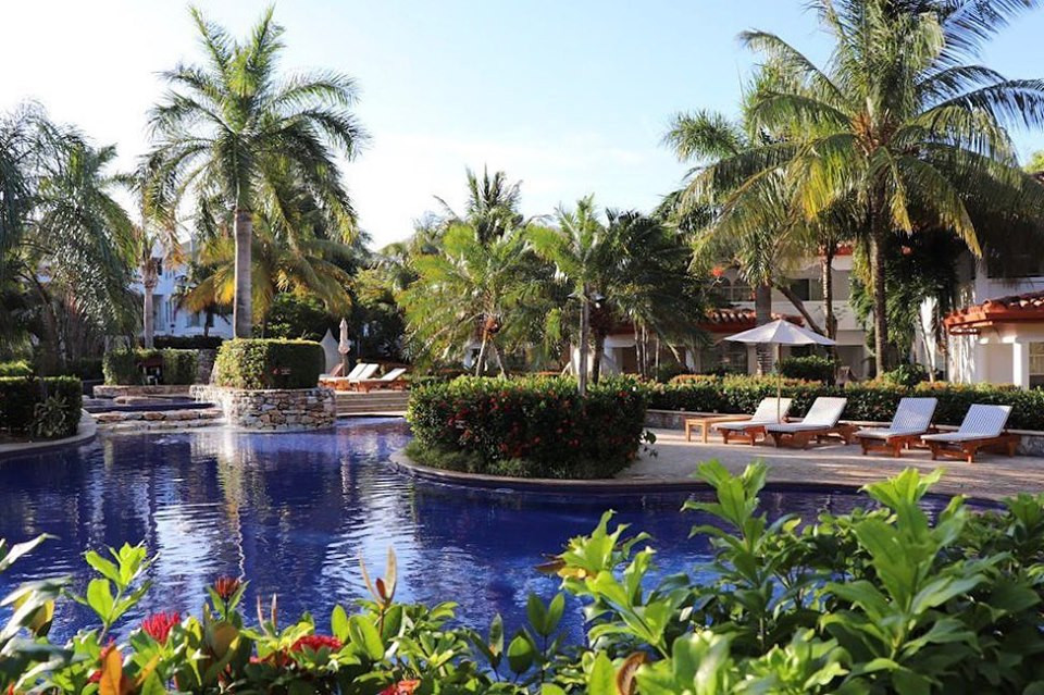 Cobalt blue pool, palm trees and tropical foliage at Mayan Princess.