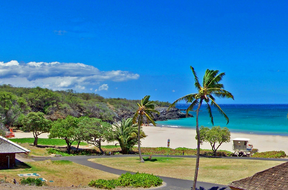Beach and grassy picnic areas at Hapuna Beach State Park, Big Island