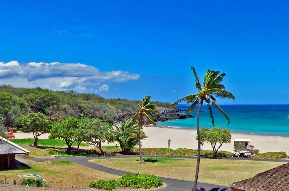 Beach and grassy picnic areas at Hapuna Beach State Park, Big Island