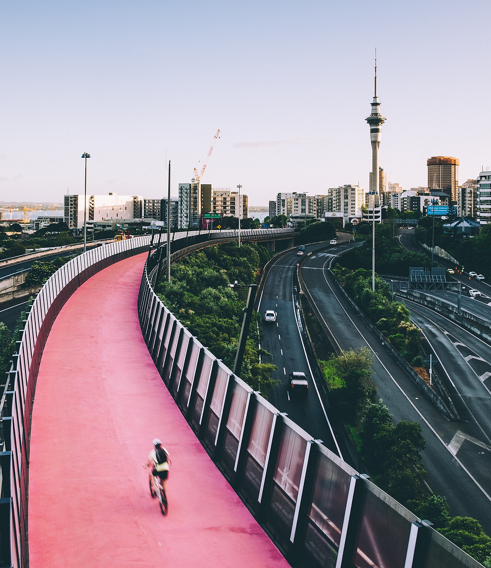 The pink Nelson Street Cycleway and Auckland's Sky Tower in the background.