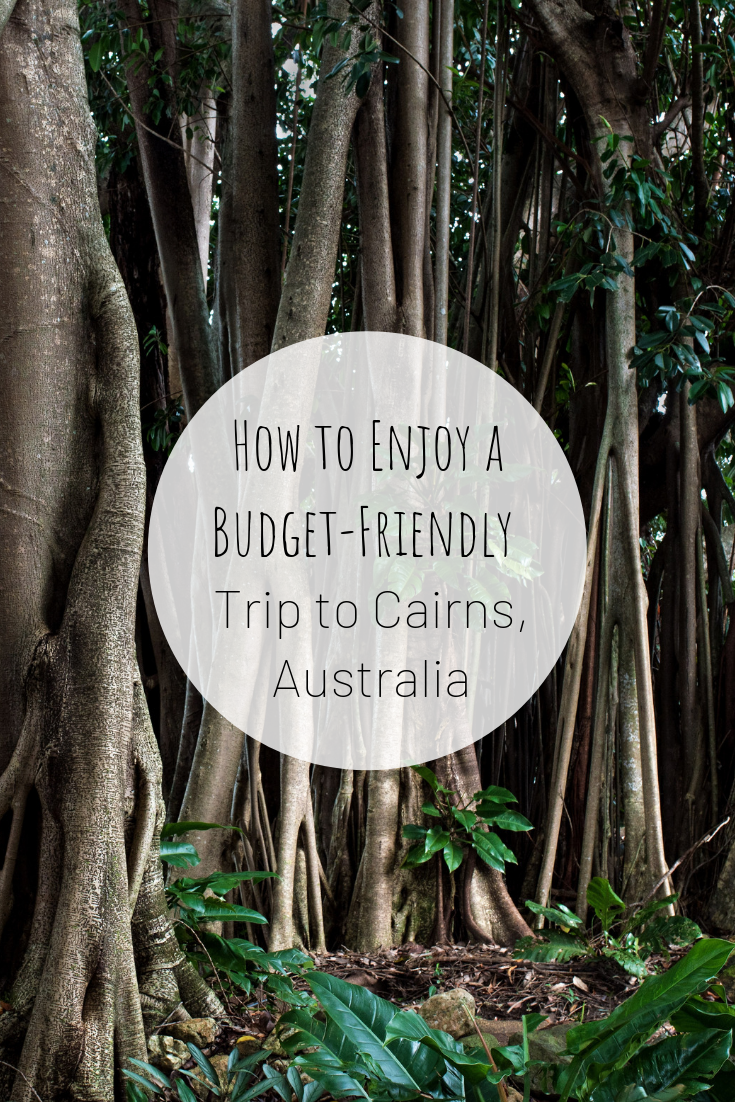 Pinterest picture for how to enjoy a budget friendly trip to Cairns, Australia