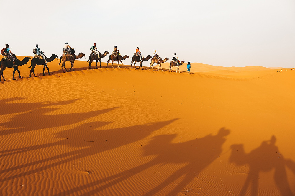 People on camels in the Sahara during a family vacation