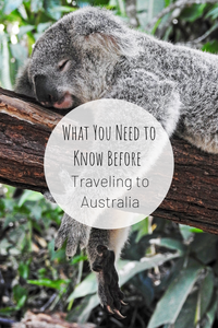 Pinterest image for What You Need to Know Before Traveling to Australia