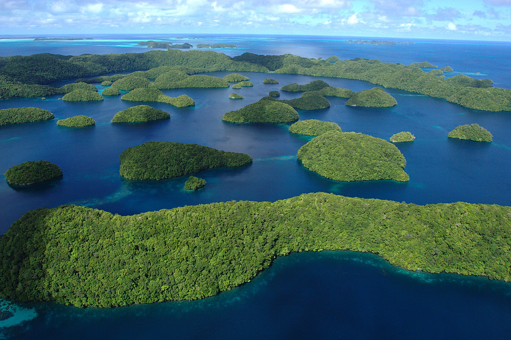 Shrub covered atolls in the cobalt blue waters of Palau.