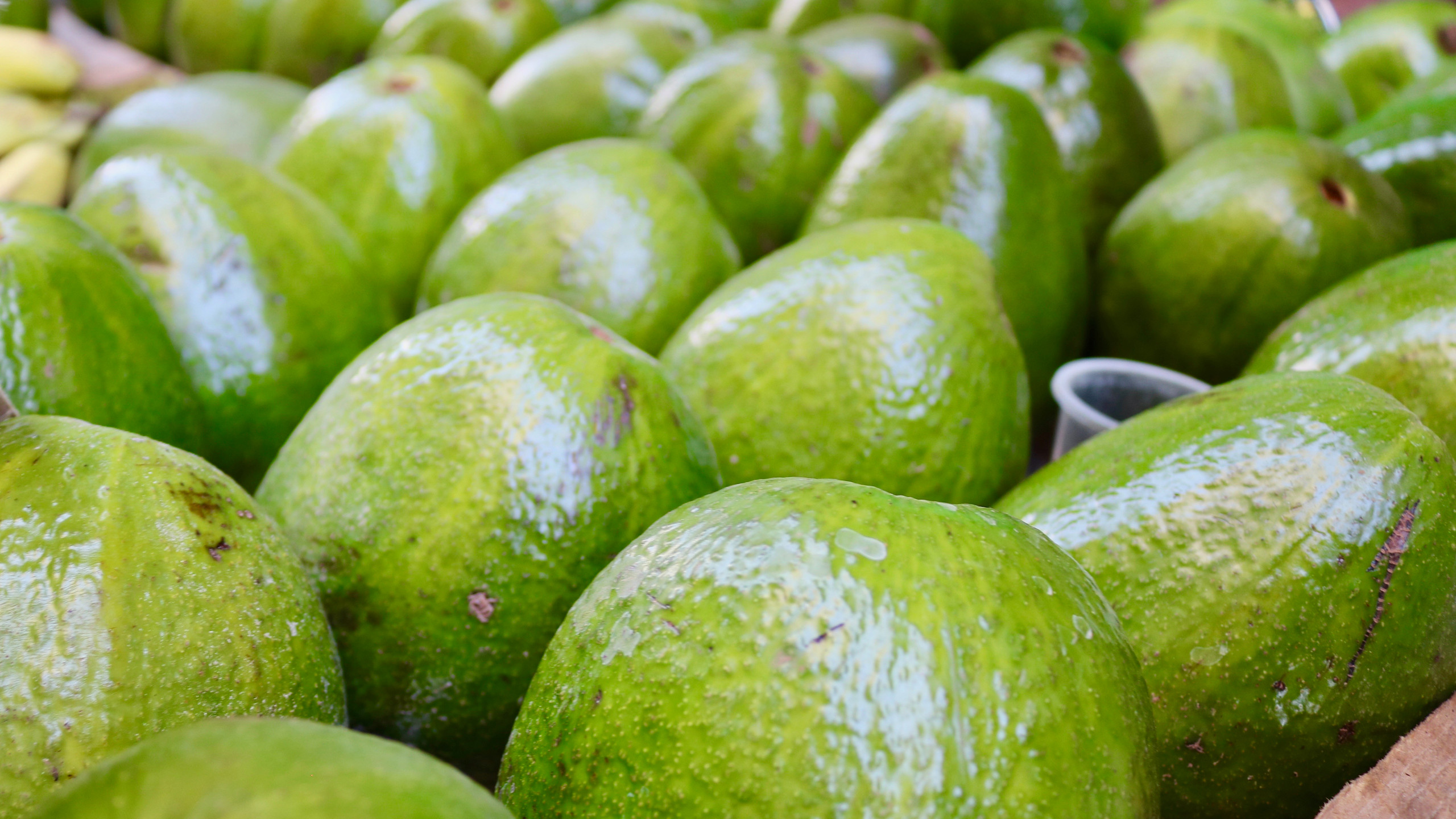 Close-up of massive avocados in a cart on the street of Old Havana.