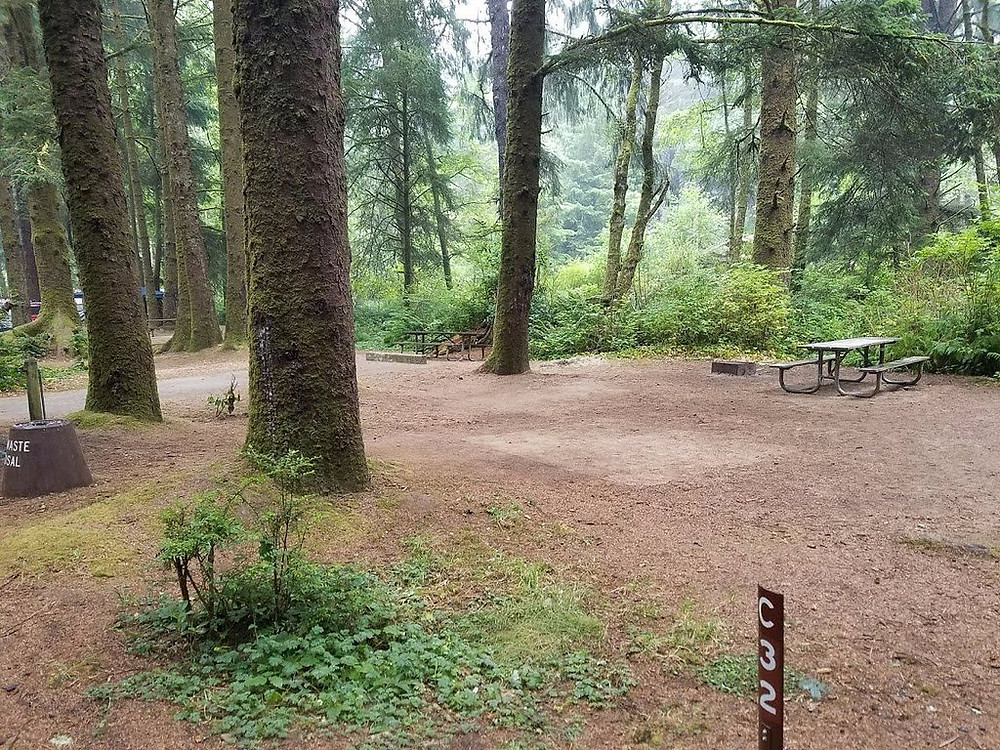 Empty campsites at Beverly Beach State Park in Oregon.