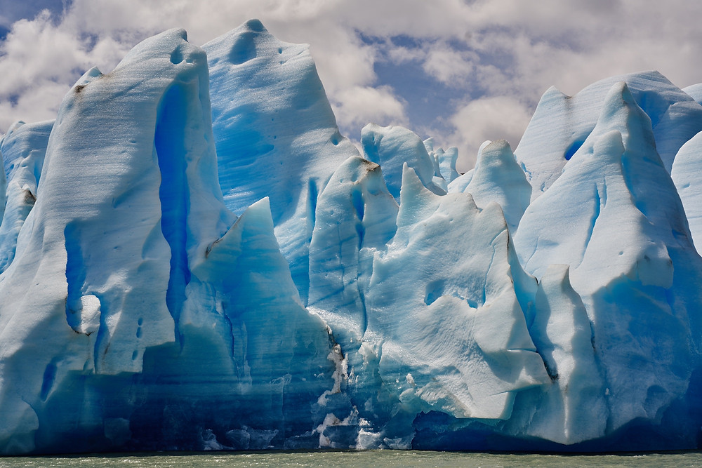 Massive blue glaciers in Patagonia's Grey Lake.