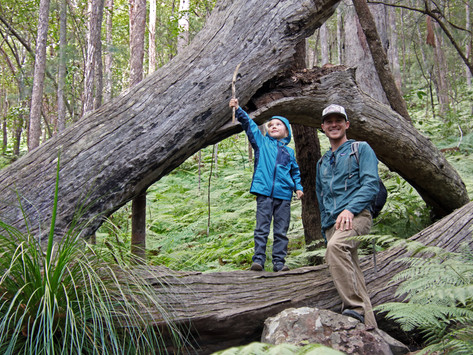 13 Tips for an Epic Day Hike with the Family