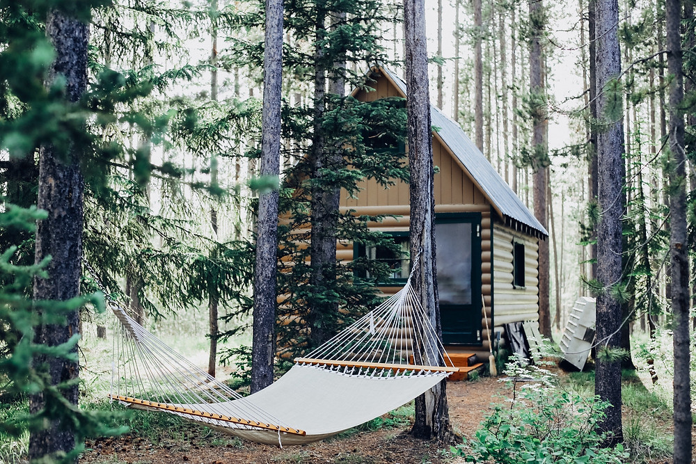 Cabin in the woods with a hammock, ideal for travelers who want seclusion