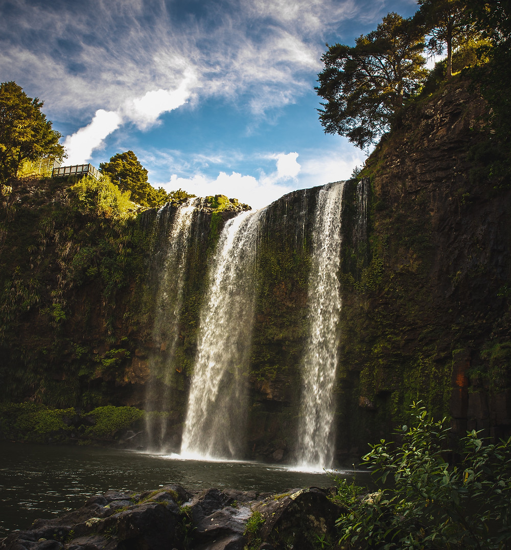 View from the bottom of Whangarei Falls in New Zealand.