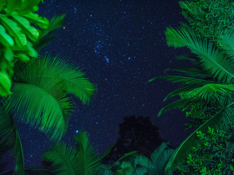 Travel Journal: Costa Rica Part One