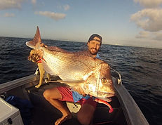 fishing lures, lure fishing, snapper fishing