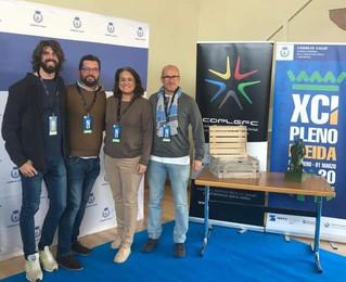 El COLEF Andalucía, presente en el XCI Pleno del Consejo COLEF
