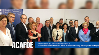 La ACAFDE se reúne en la sede del Consejo COLEF para seguir trabajando por su reconocimiento ministe