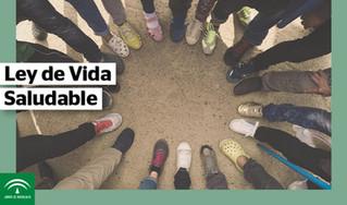 Posicionamiento del COLEF Andalucía ante el proyecto de Ley para la Promoción de una Vida Saludable