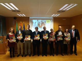"""COLEF Andalucía, en la presentación del programa """"Juega limpio, el valor educativo y social del depo"""
