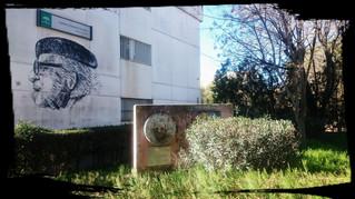 28 de mayo: Encuentro digital con el Departamento Ciclo Formativo TSEASD IES Ramón Carande (Sevilla)