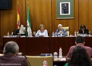 """Comunicado del COLEF Andalucía a la noticia de la Consejería de Educación """"Andalucía blinda la asign"""