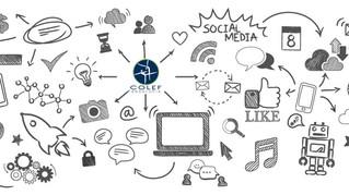 Noticias, redes, campañas... Así fue la comunicación del COLEF Andalucía en 2020