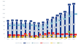 Estadísticas de colegiación del COLEF Andalucía, primer semestre 2020