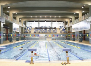 El COLEF Andalucía avala la contratación de un titulado universitario en Ciencias del del Deporte po