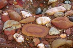 Pèle mèle en harmonie de rouges. Presqu'ile de Crozon (29)