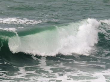 Bouteille à la mer...