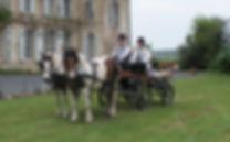 promenade en caleche et chevaux sur les bords de l'etang de Lindre