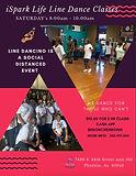 2020 November ISpark Life LD Flyer.jpg