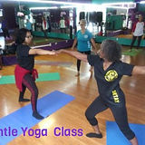 20200904 Anna's Senior Gentle Yoga .jpg