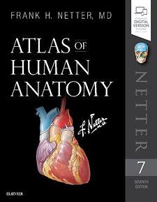 Netter's Atlas of Human Anatomy.jpg