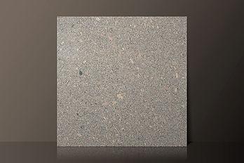 Paco Grey Polished Granite Tile