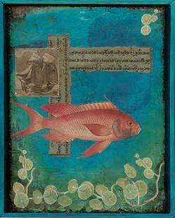 Tibetan Fish