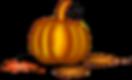 pumpkin-151743_640.png