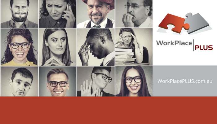Complex people issues are often caused by differing personalities and communication styles. WorkPlacePLUS offers a range of behavioural profiling services to assist with communication issues, team building and performance management within your organisation.
