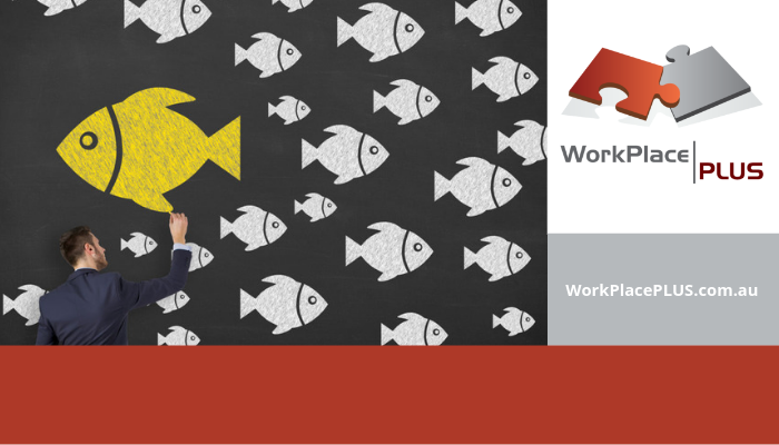 For assistance with your workplace culture, please contact Anna on 0419 533 434 or visit WorkPlacePLUS.com.au.